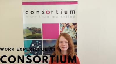 Work Experience at Consortium