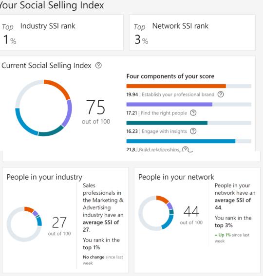 Lara Squires SSI Social Selling Index